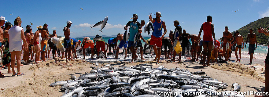 ( EDITORS NOTE - Retransmission with alternate crop ) - Fishermen put the daily production for sale at the beach for tourists and residents, Arraial do cabo city, Rio de Janeiro State, Brazil.