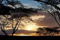 Soysambu Conservancy, Great Rift Valley, Kenya
