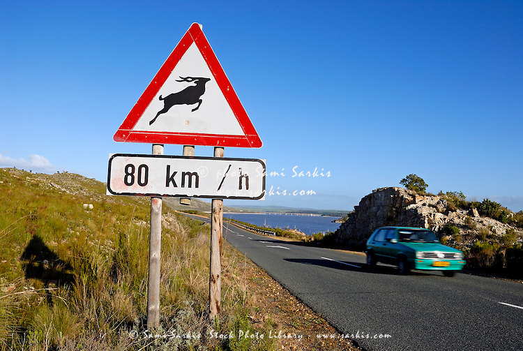 Antelope road sign and speeding car between Stellenbosch and Franschhoek, South Western Cape, South Africa