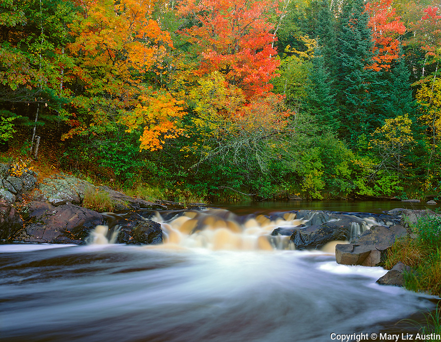 Pattison State Park, WI<br /> Small falls on the Black River with hardwood forest in autumn colors