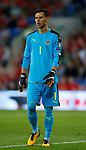 Heinz Lindner of Austria during the World Cup Qualifying Group D match at the Cardiff City Stadium, Cardiff. Picture date 2nd September 2017. Picture credit should read: Simon Bellis/Sportimage