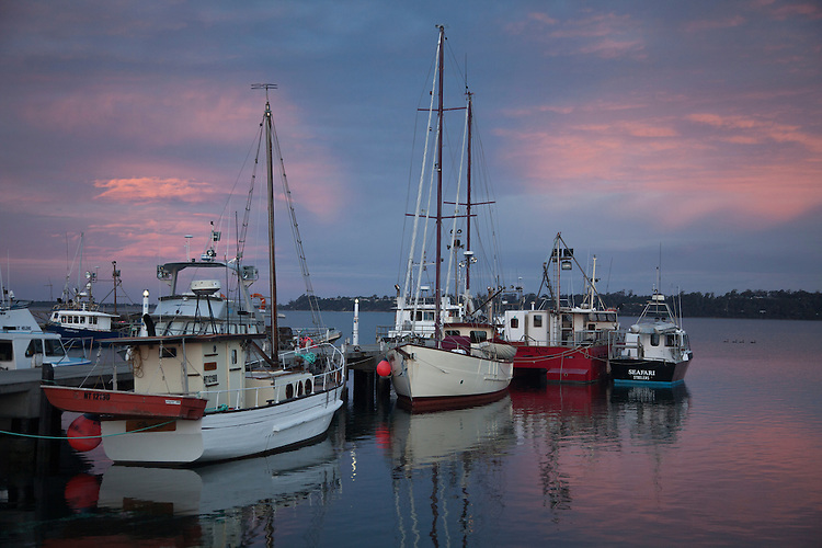 Crayfish boats at St. Helens located on Georges Bay, NE Tasmania