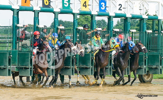 Zoetic winning at Delaware Park on 8/19/15