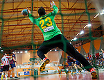 Handball - ASOBAL 2013-14 League.<br />