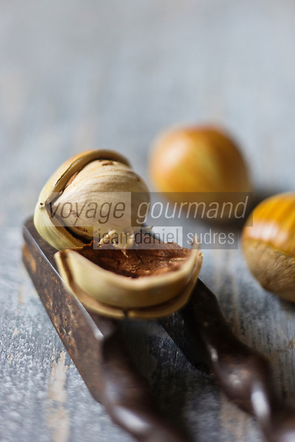 Gastronomie générale: Noisette - Stylisme : Valérie LHOMME
