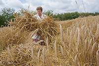 Traditional Wheat Harvest Festival in Opalyi 2013