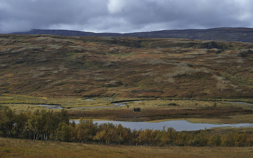 Autumn Forollhogna national park,Norway Landscape, landskap,