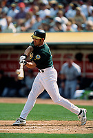 OAKLAND, CA - Johnny Damon of the Oakland Athletics bats during a game against the Chicago White Sox at the Oakland Coliseum in Oakland, California in 2002. (Photo by Brad Mangin)