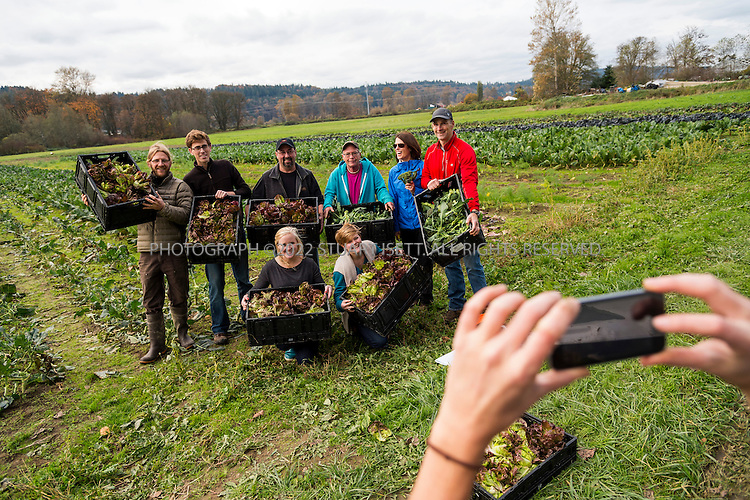 10/30/2013-- Carnation, WA, USA<br /> <br /> Volunteers from  Harvest Against Hunger, organized by Rotary First Harvest (http://firstharvest.org) glean food from Oxbow Farm in Carnation, WA, near Seattle.<br /> <br /> Here: volunteers pose for a photo with broccoli and red butter nut lettuce gleaned from the farm.<br /> <br /> A lot of food is wasted in America, where 40% of food is thrown away. In an effort to eliminate food waste, local programs enable volunteers to go to farms and glean after a harvest, saving food that would be thrown away or plowed under because it is not in good enough shape to sell.<br /> <br /> A program in Washington pairs gleaning with AmeriCorps volunteers to pick up and distribute the waste. Local volunteers glean crops and transport food to a local food bank or soup kitchen, prep the food, and use it to feed senior citizens or low income communities.<br /> <br /> Photograph by Stuart Isett<br /> &copy;2013 Stuart Isett. All rights reserved.