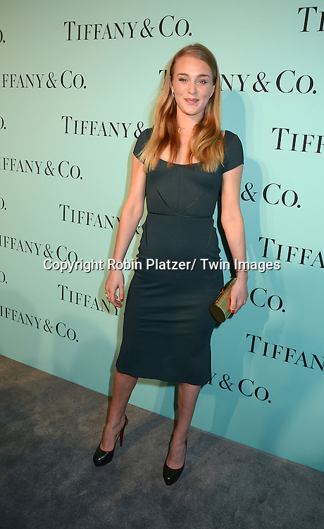 Elizabeth Gilpin attends the Tiffany & Co party celebrating  The 2014 Blue Book on April 10, 2014 at the Guggenheim Museum in New York City, USA.