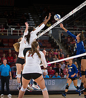STANFORD, CA - December 1, 2017: Meghan McClure, Tami Alade, Merete Lutz at Maples Pavilion. The Stanford Cardinal defeated the CSU Bakersfield Roadrunners 3-0 in the first round of the NCAA tournament.