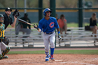 Chicago Cubs second baseman Yeiler Peguero (15) tosses his bat during a Minor League Spring Training game against the Oakland Athletics at Sloan Park on March 13, 2018 in Mesa, Arizona. (Zachary Lucy/Four Seam Images)