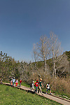 Israel, Menashe Heights. The trail along Hashofet stream
