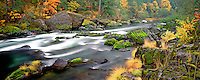 Fall colors alnog North Fork Umpqua River, Oregon.