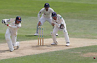 Aaron Beard of Essex in batting action during Essex CCC vs Yorkshire CCC, Specsavers County Championship Division 1 Cricket at The Cloudfm County Ground on 8th July 2019