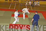 Action from the County Karate championships in Killorglin Sportscentre on Saturday...