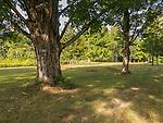 Dana Common in The Quabbin Reservoir