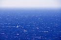 Single sailboat in the open blue ocean