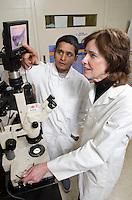 Kamalakar Chatla (left) and Dr. Patricia Gaunt examine images showing a disease in catfish. (Pegasus Press Summer 2013)