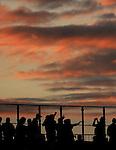 FUDBAL, BEOGRAD, 5. Jun 2010. - Navijaci. Prijateljska utakmica izmedju Srbije i Kameruna odigrana u okviru priprema za Svetsko prvenstvo u Juznoj Africi. Foto: Nenad Negovanovic