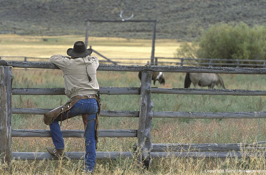 Cowboy leaning on fence. Ponderosa Ranch, Seneca, OR.