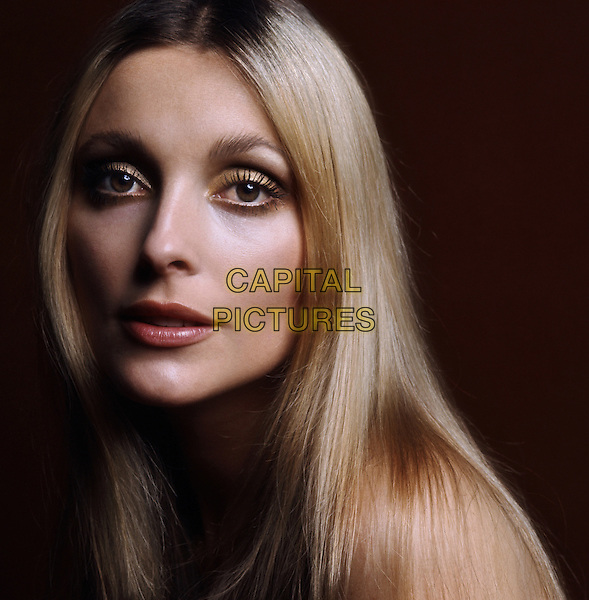 Sharon Tate<br /> *Filmstill - Editorial Use Only*<br /> CAP/NFS<br /> Image supplied by Capital Pictures