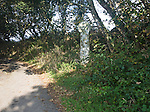 Ancient Celtic stone cross by the roadside of a small country lane shaded by trees, Gweek, Cornwall, England