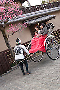Rickshaw in the famous Gion area of Kyoto City.