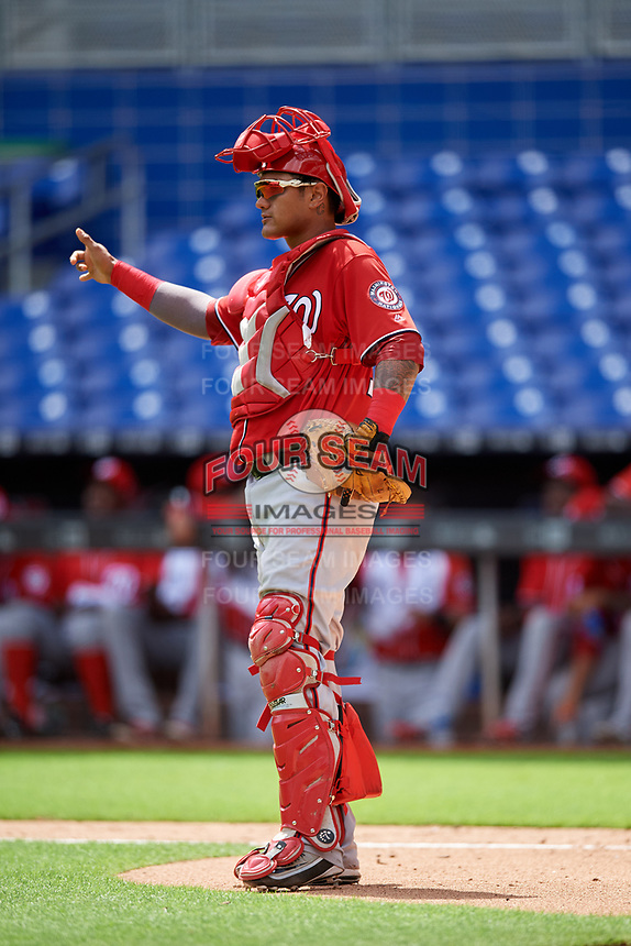 Washington Nationals catcher Alejandro Flores (19) signals to the defense during a Florida Instructional League game against the Miami Marlins on September 26, 2018 at the Marlins Park in Miami, Florida.  (Mike Janes/Four Seam Images)