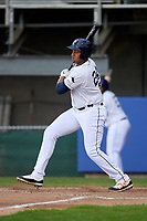 Princeton Rays designated hitter Vincent Byrd (24) follows through on a swing during the second game of a doubleheader against the Greeneville Reds on July 25, 2018 at Hunnicutt Field in Princeton, West Virginia.  Greeneville defeated Princeton 8-7.  (Mike Janes/Four Seam Images)