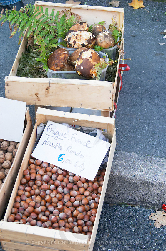 Hazelnut nuts for sale at a market stall at the market in Bergerac for 6 euro per kilo. And cepes porcini mushrooms. Bergerac Dordogne France