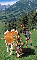 AUT, Oesterreich, Salzburger Land, Dienten, Almabtriebsfest, Senner und geschmueckte Kuh | AUT, Austria, Salzburger Land, Dienten, traditional festival driving cattle down from the Alps, decorated cow