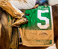 CHARLES TOWN, WV - APRIL 22: The muddy saddle cloth of Imperative #5, ridden by Javier Castellano, after winning the Charles Town Classic on Charles Town Classic Day at Charles Town Races and Slots on April 22, 2017 in Charles Town, West Virginia (Photo by Scott Serio/Eclipse Sportswire/Getty Images)