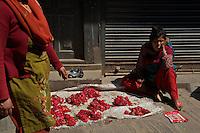 Kathmandu Town Nepal
