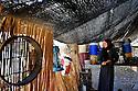 Iraq 2008.Young displaced woman under the tent in the Aso bridge camp of Candil   Irak 2008. Jeune femme de la region de Candil dans un camp pour personnes deplacees