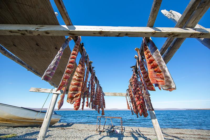 Salmon dry in the air in the coastal village of Teller, Seward Peninsula, Alaska.