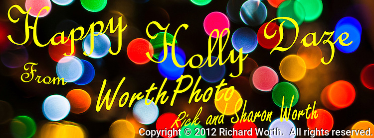 "Multicolored lights provide a season's greetings background to a fun ""Holly Daze"" Holiday Greeting from WorthPhoto."