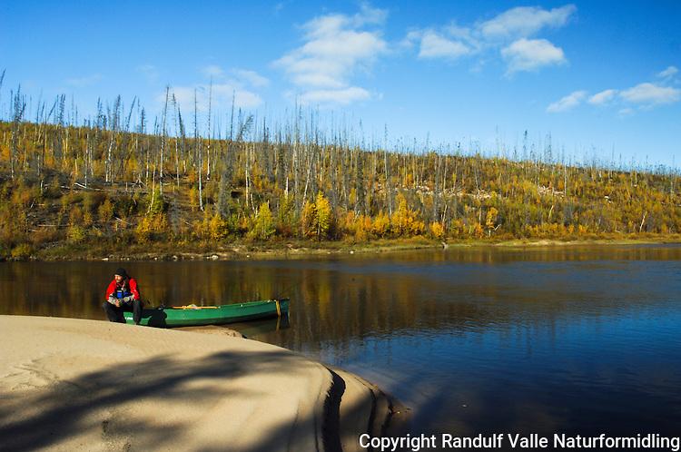 Gammelt skogbrannfelt ved Snowdrift River. Mann sitter på kano  ---- Signs of forest fire by Snowdrift River and man sitting on canoe
