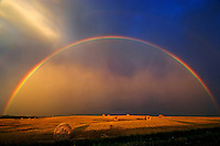 Rainbow and bales after prairie storm<br /> Near Cypress River<br /> Manitoba<br /> Canada