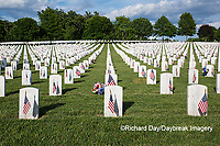 65095-01813 Flags on Memorial Day at Jefferson Barracks National Cemetery, St Louis, MO