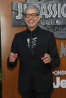 LOS ANGELES, CA - JUNE 12: Jeff Goldblum at Jurassic World: Fallen Kingdom Premiere at Walt Disney Concert Hall, Los Angeles Music Center in Los Angeles, California on June 12, 2018. Credit: Faye Sadou/MediaPunch
