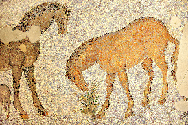 6th century Byzantine Roman mosaics of horses from the peristyle of the Great Palace from the reign of Emperor Justinian I. Istanbul, Turkey.