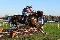 Ding Ding ridden by Marc Goldstein in The Tysers Mares' Handicap Hurdle during Horse Racing at Plumpton Racecourse on 2nd December 2019