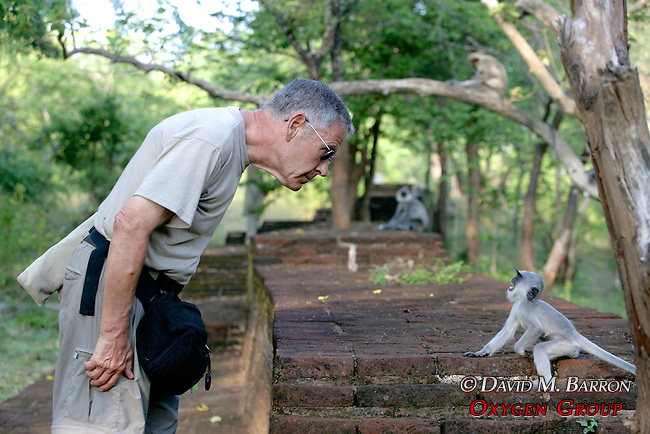 Sandy Cohen Interacting With Young Hanuman Langur