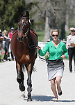 April 23, 2014: Pavarotti and Jessica Phoenix during the first horse inspection at the Rolex Three Day Event in Lexington, KY at the Kentucky Horse Park.  Candice Chavez/ESW/CSM