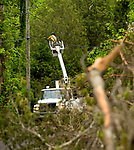 SOUTHBURY, CT-052218JS07--Workers from Phoenix Communications in Massachusetts, install communication cables surrounded by tornado damage along Horse Fence Hill Road in Southbury. The restoration efforts will be going on for quite some time. <br /> Jim Shannon Republican American