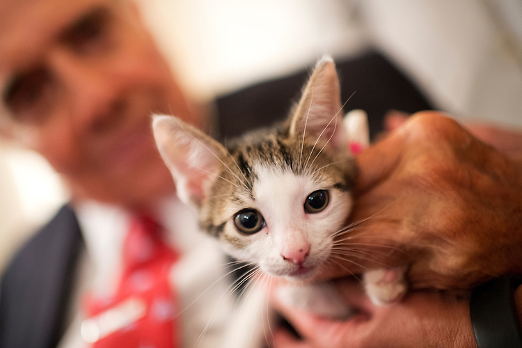 UNITED STATES - JULY 30: Former Sen. Bob Dole, R-Kan., pets a cat during the ASPCA's Fourth Annual Paws for Celebration pet adoption event in Cannon Building, July 30, 2015. (Photo By Tom Williams/CQ Roll Call)