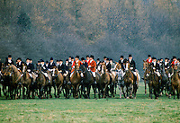 The field of the Cheshire Hunt with hunt officials wearing traditional pink hunting jackets and top hats, UK