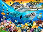 Howard, SELFIES, paintings+++++,GBHR877,#Selfies#, EVERYDAY ,underwater,maritime,dolphins