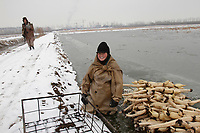 A Chinese farmer rests after she braved sub-zero temperatures to harvest lotus roots at a frozen pond at a lotus root farm on March 8, 2010 in Beijing, China. Lotus root, a popular Chinese cuisine, also symbolises good luck and sweet love in Chinese tradition.